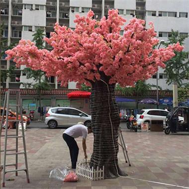 樱花树仿真