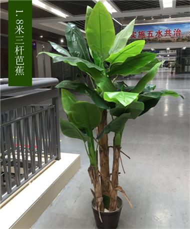 商场仿真芭蕉树