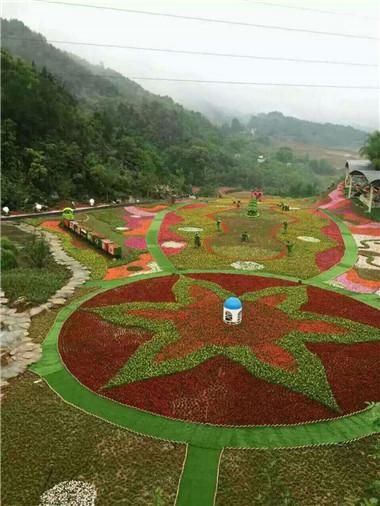 植物雕塑园区