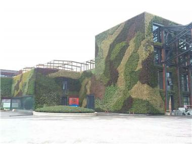 户外绿植墙
