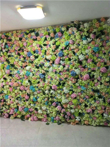 绿植墙花海