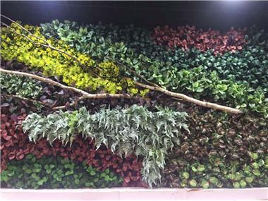 绿植墙景观