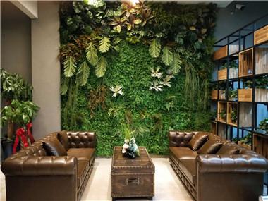 墙体绿植墙