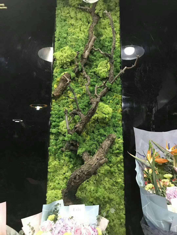 绿植墙花店