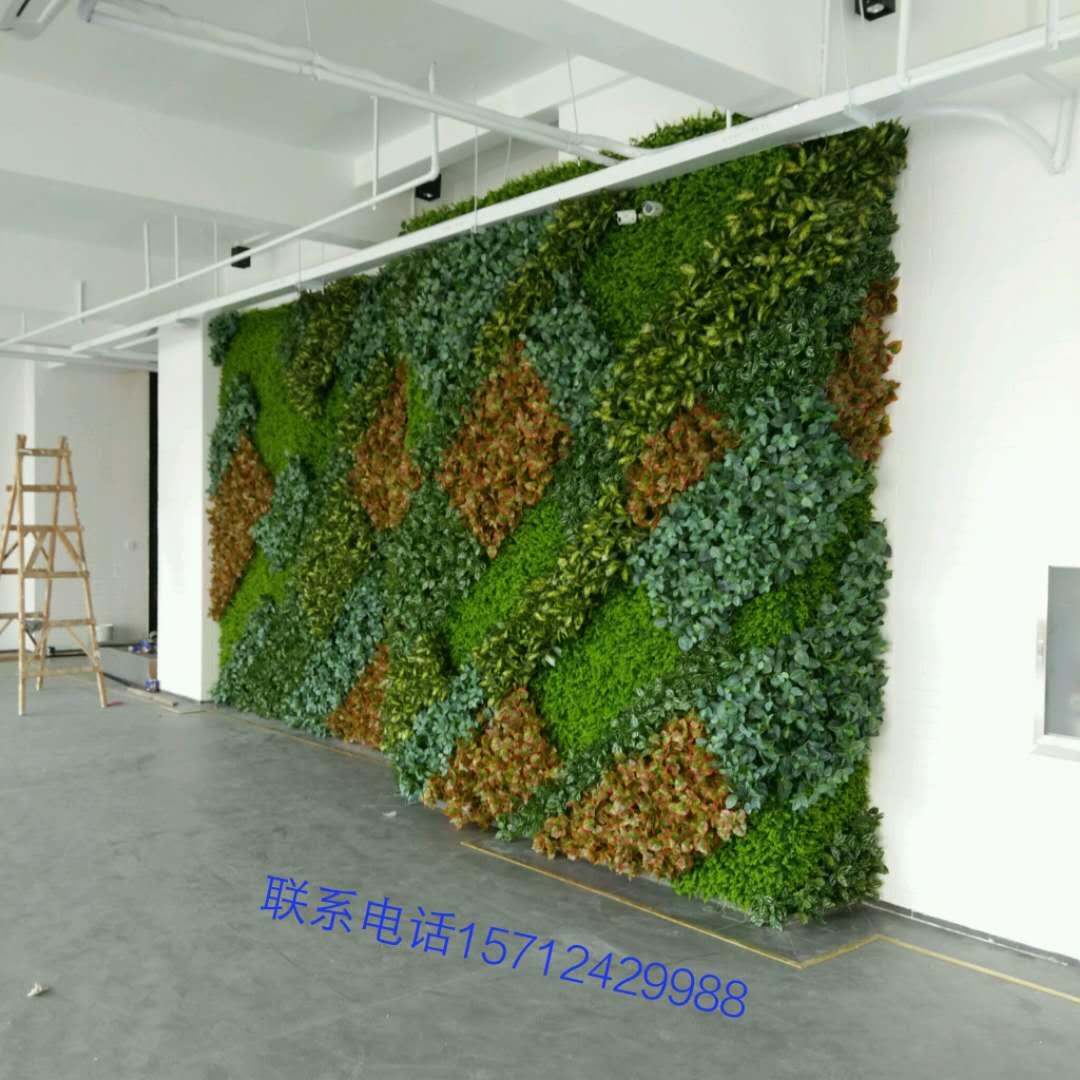 绿色植物墙装饰