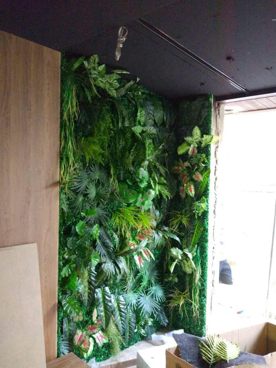 家庭绿植墙