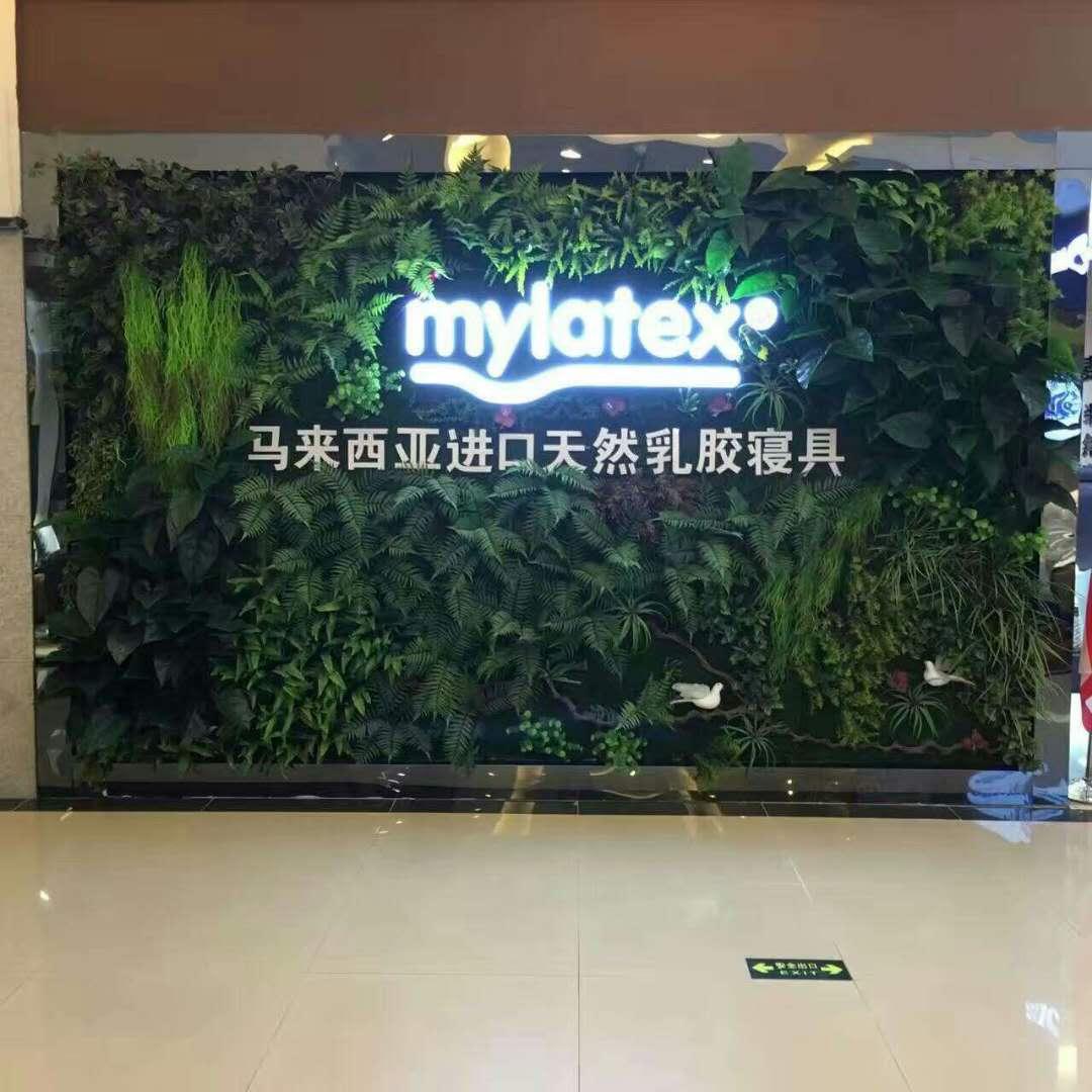 公司logo绿植墙