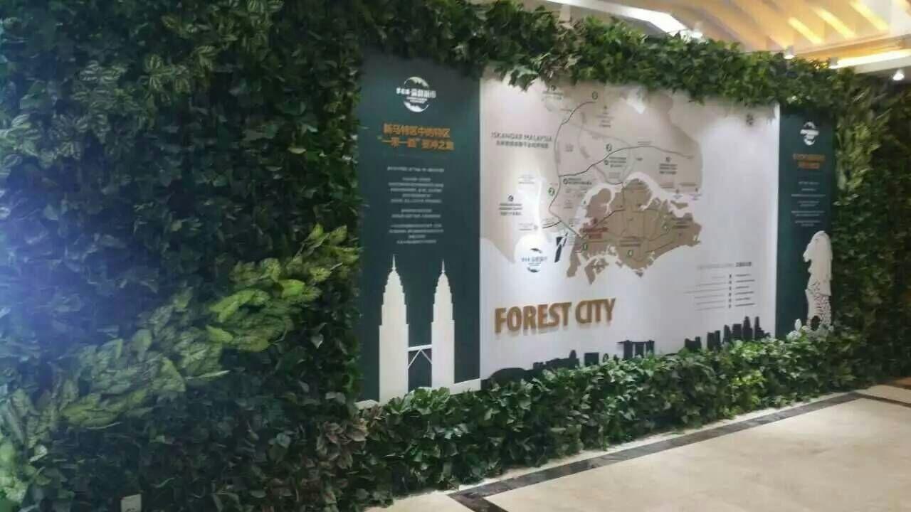 公司绿色植物墙