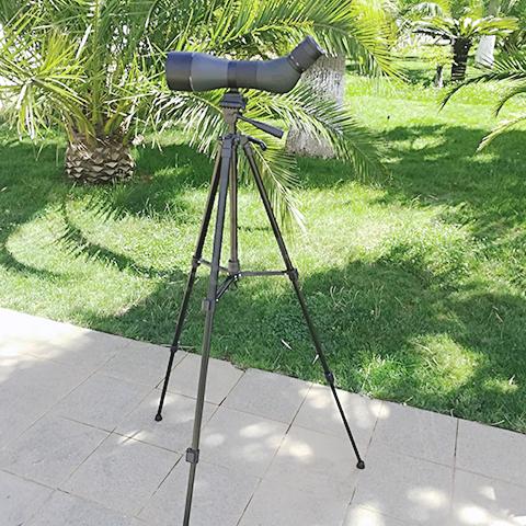 觀鳥單筒望遠鏡