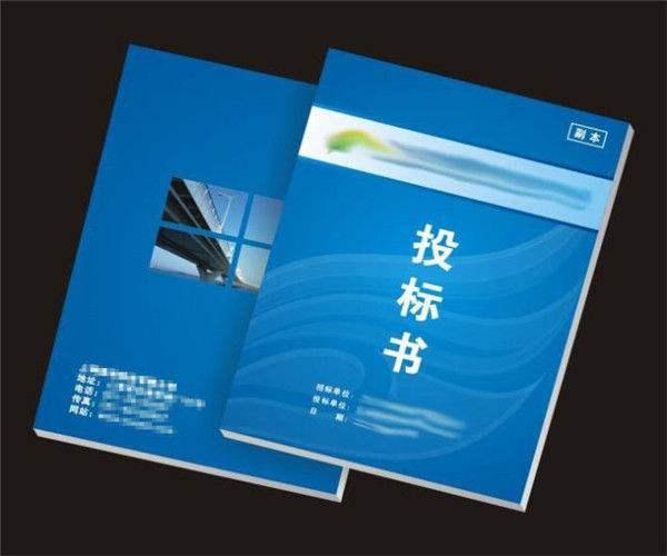 云南投标书制作关于部分投标单位投标文件废标情况整理