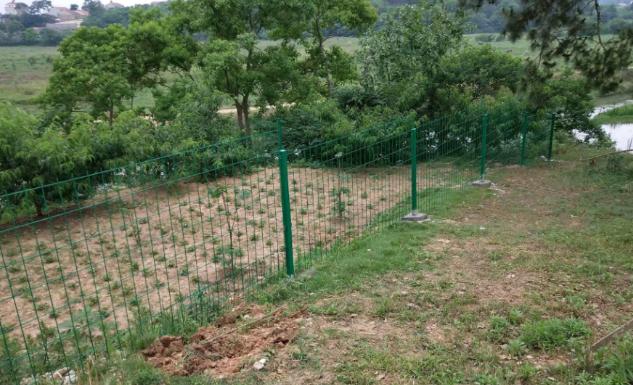 昆明果樹地護欄網批發