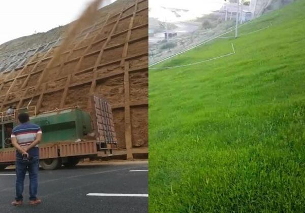 边坡防护网与绿植的结合——客土喷播