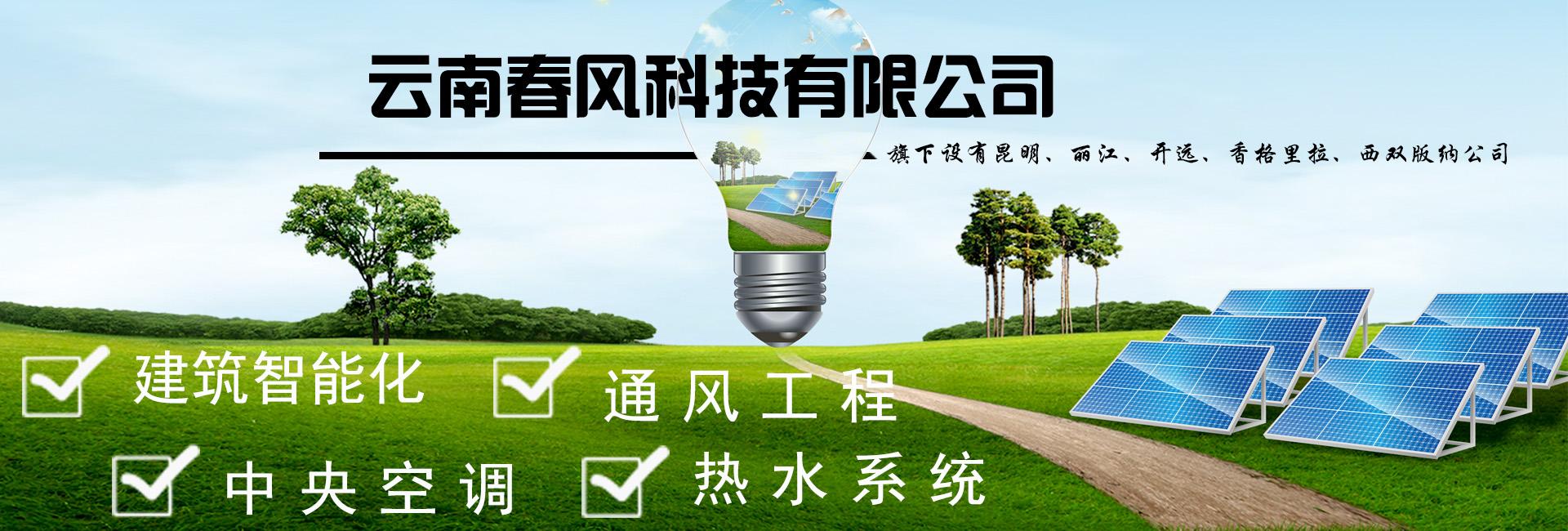 昆明上海11选五注册