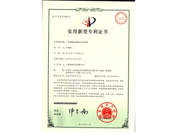 實用新型專利證書:一種地暖系統缺水防護裝置