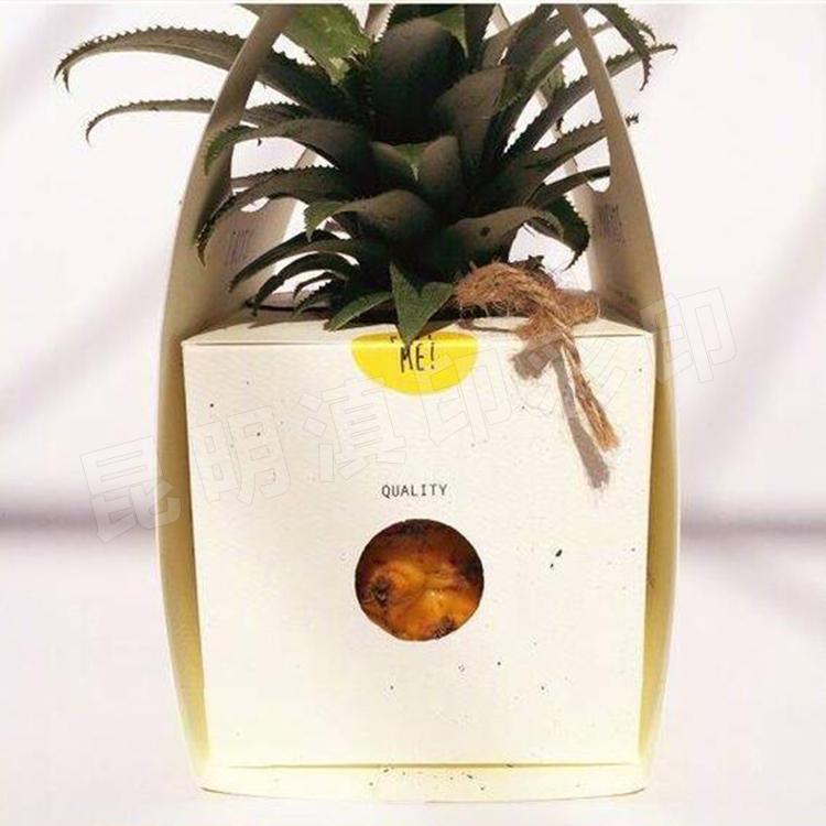 菠萝包装盒