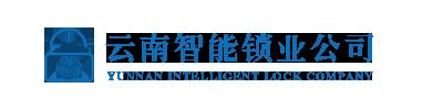 云南智能锁业公司