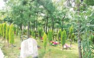 昆明金陵公墓2