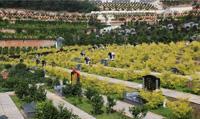 """昆明青龙山公墓公司了解到推行""""节地生态葬""""的保障措施有以下几点"""