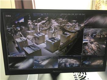 楚雄恐龙谷安装体育万博系统案例
