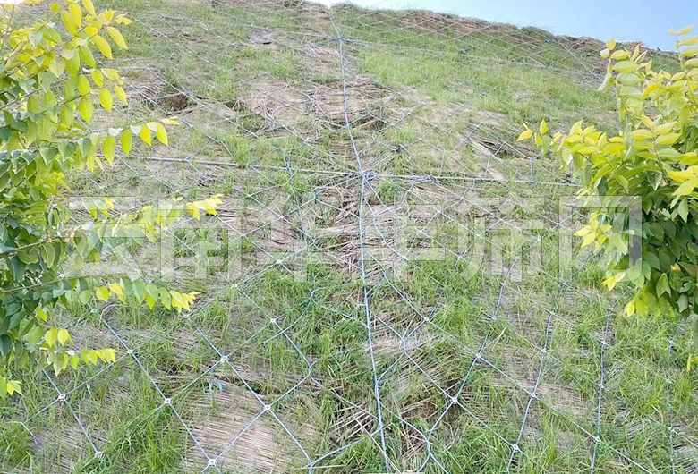 边坡sns柔性防护网