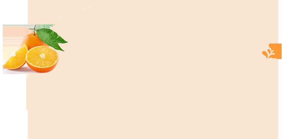 冰糖橙背景图