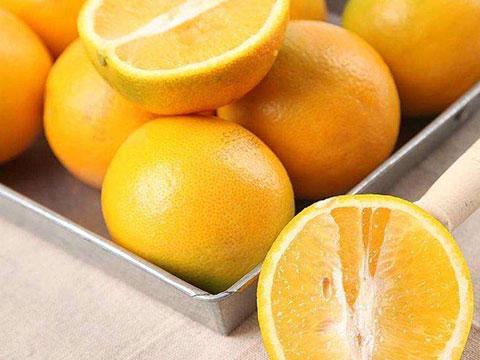 大果冰糖橙