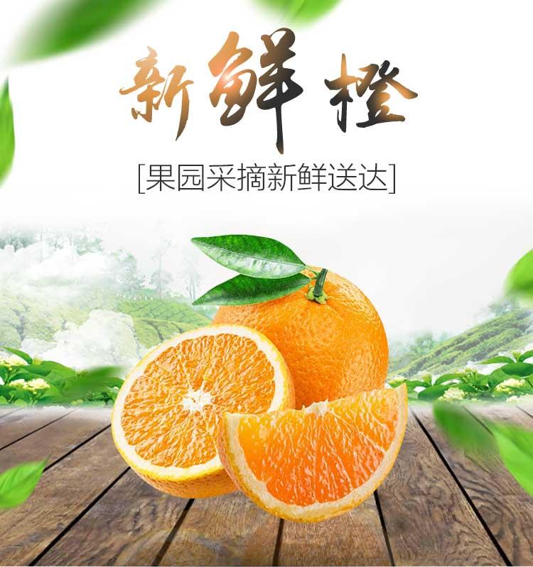 鲜果褚橙代销