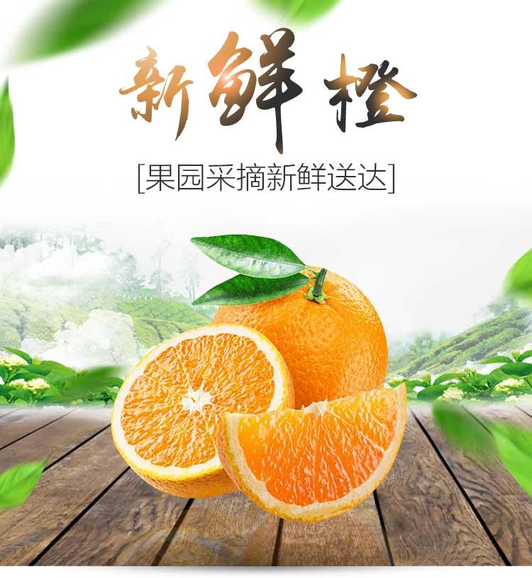 昆明褚橙品牌