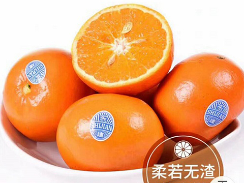 云南新鲜褚橙
