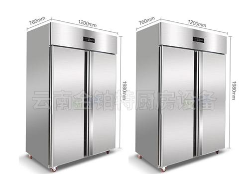 大二门冷藏冰柜