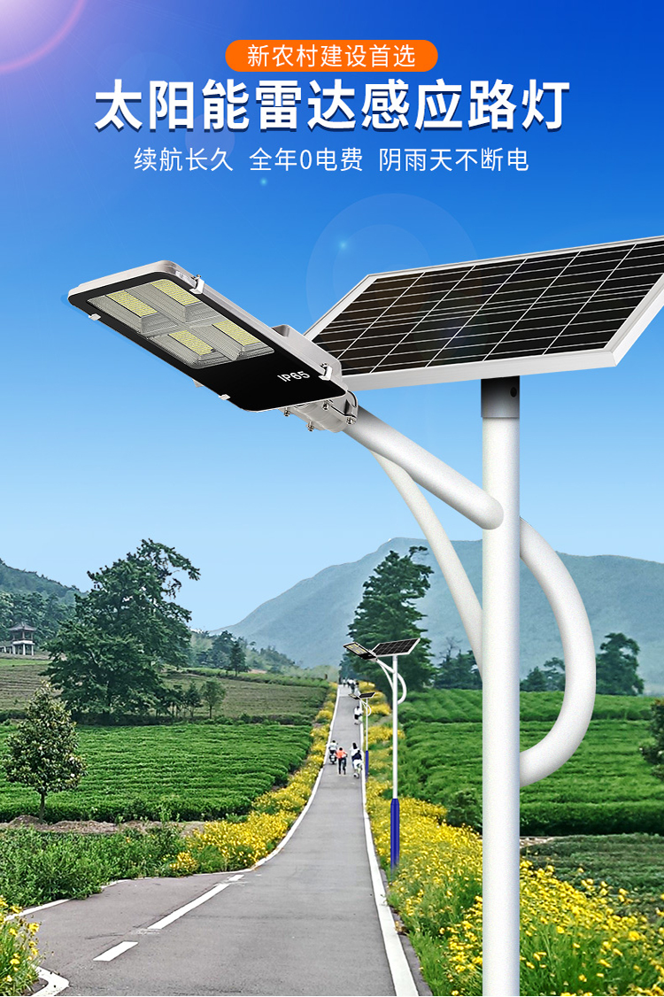 农村太阳能特色路灯