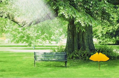 园林景观设计讲解假山设计要注意哪几点