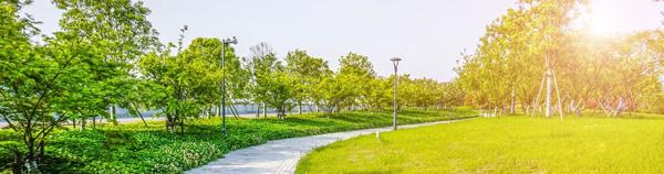 园林景观植物养护在园林绿化工程中可以说是占据着很高的地位