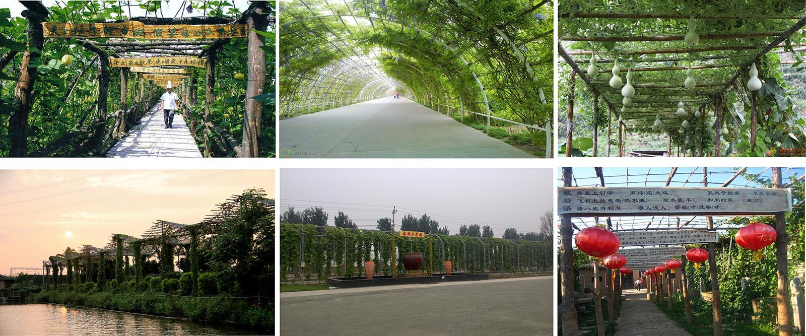 云南安宁佳禾休闲生态庄园景观工程庄园绿色长廊