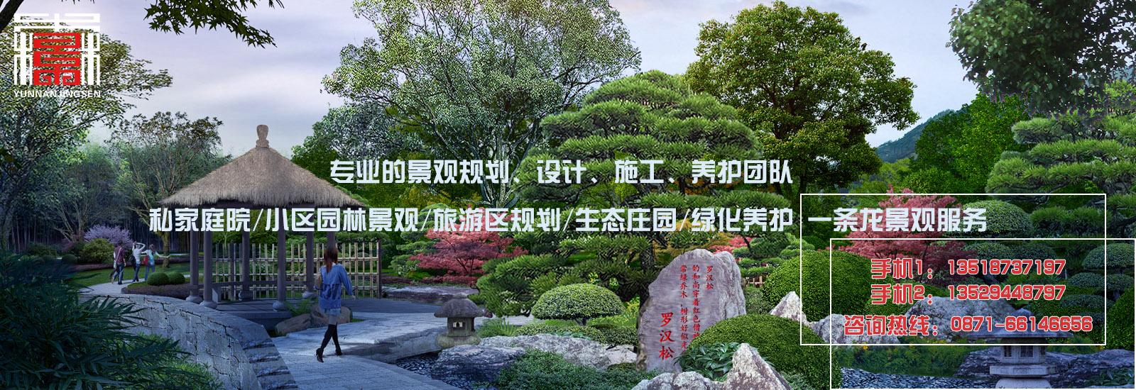云南园林景观设计植物搭配