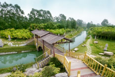 园林景观设计中的地形处理经验总结