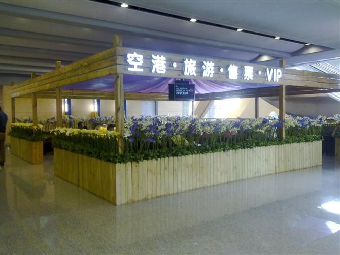 长水国际机场防腐木