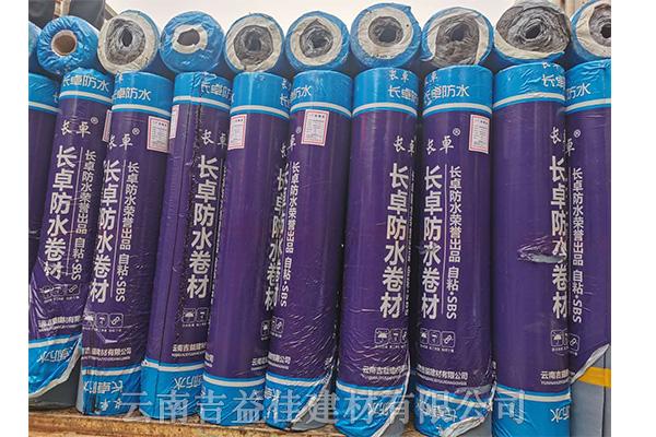 聚酯胎sbs改性瀝青防水卷材廠家