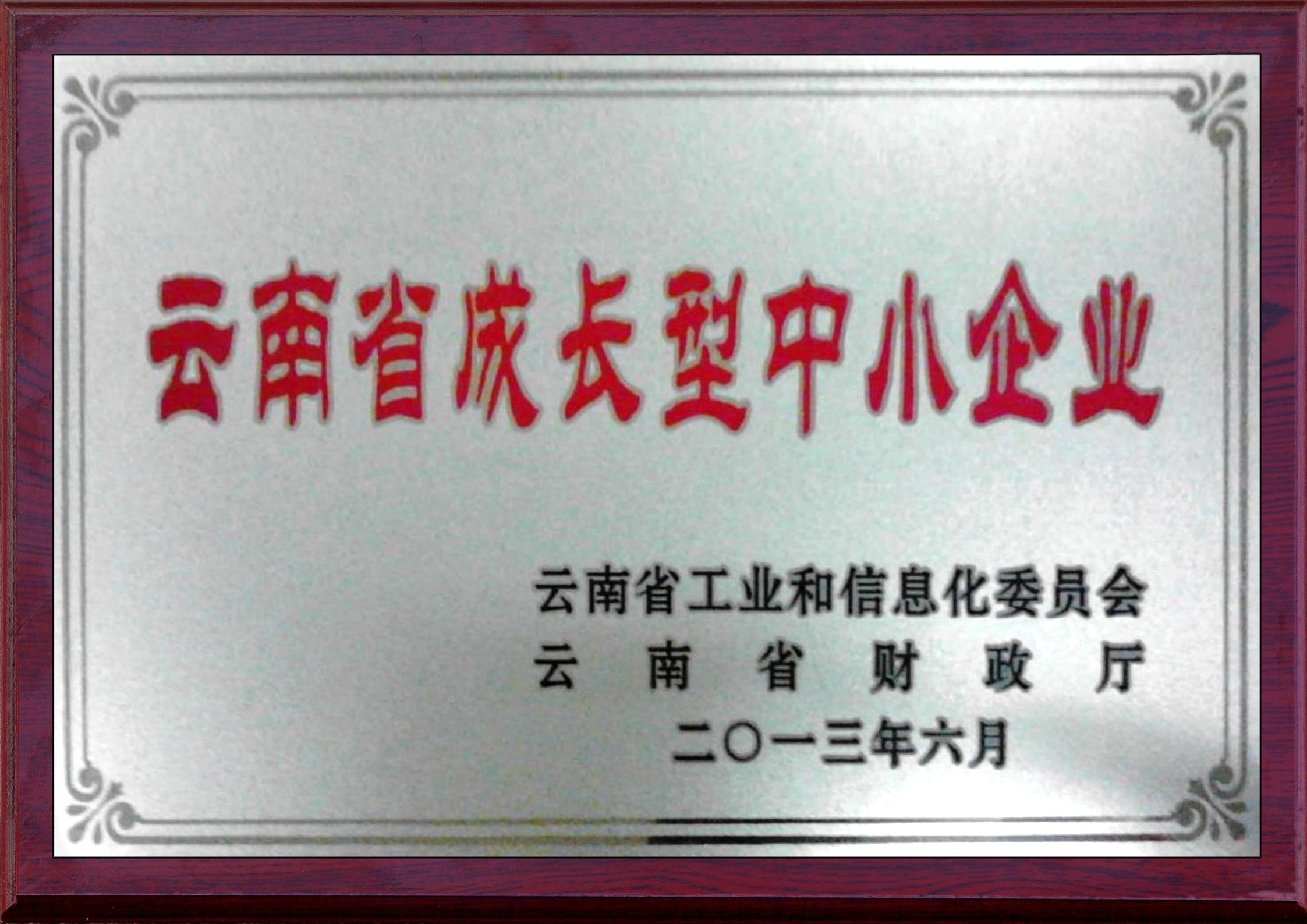 云南成長型中小企業