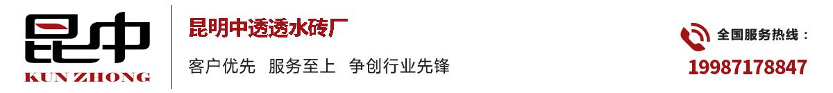 云南昆明中透w88砖厂家