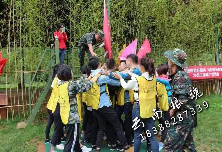 青少年团建拓展