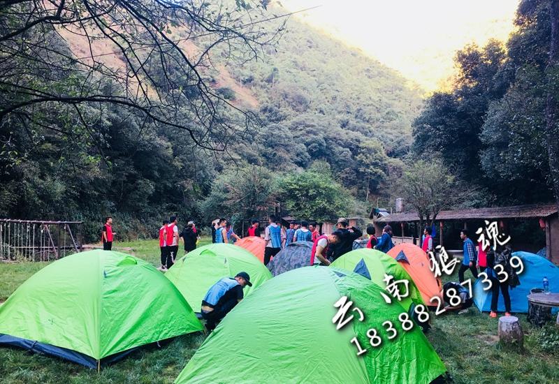 野外露营生存拓展培训