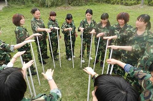 素質拓展訓練項目不倒森林