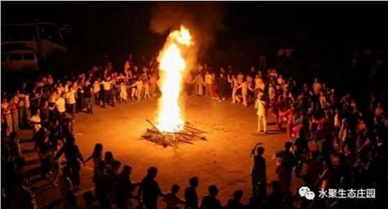 欢乐的篝火晚会