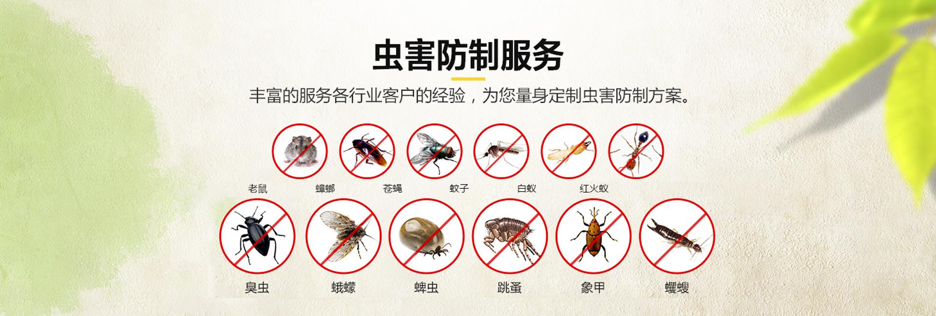 蟲害防制服務