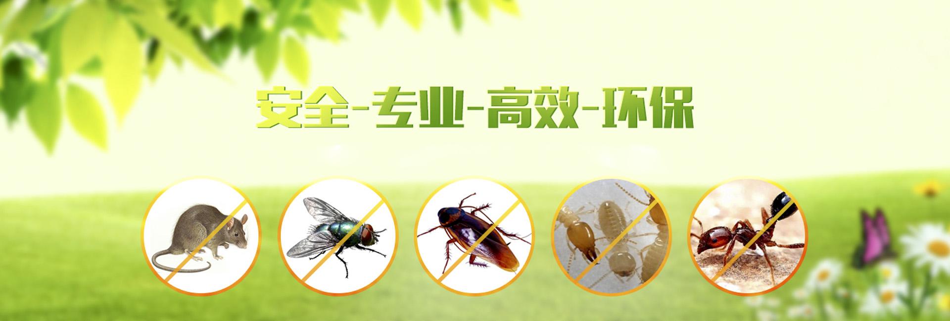 云南馬氏兄弟提供安全、專業、高效、環保服務