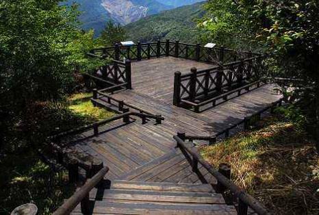 景观木质栈道