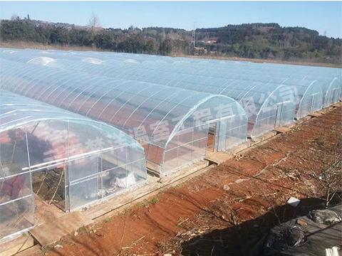 昆明单体塑料大棚厂家