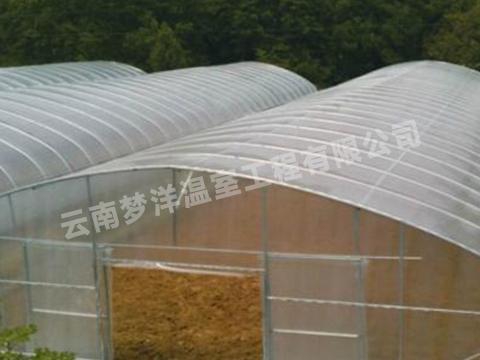 云南蔬菜单体插地大棚厂家