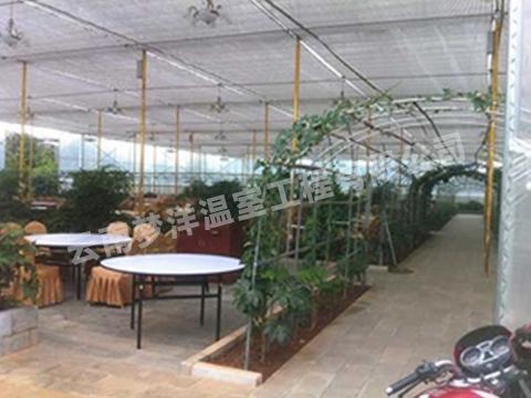 生态餐厅温室大棚